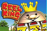 На деньги и бесплатно слот Reel King