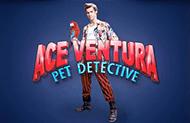Играть в казино Вулкан 24 в Ace Ventura
