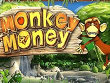 Автомат на деньги Monkey Money