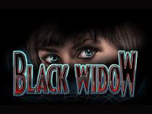 Black Widow — игровой автомат с необычным сюжетом