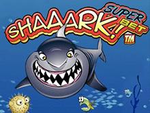 Игровые автоматы Shaaark Superbet для игры онлайн казино Вулкан